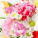 母の日にカーネーション花束の本数や色の花言葉の意味を知って贈る!