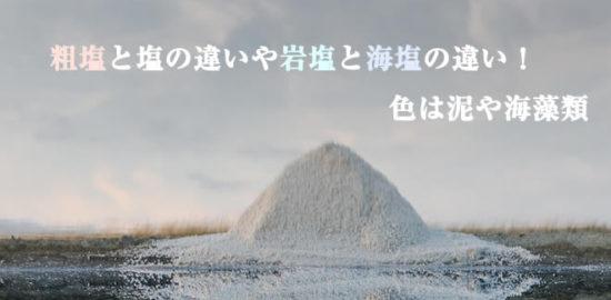 粗塩と塩の違いや岩塩と海塩の違い!色は泥や海藻類_化学