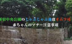 新宿中央公園のじゃぶじゃぶ池はオムツ可!赤ちゃんのマナー注意事項